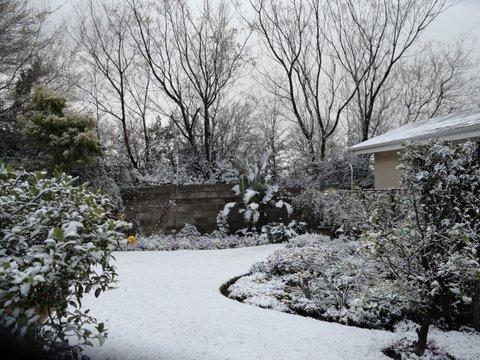 01_snow-0