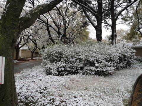 12_snow